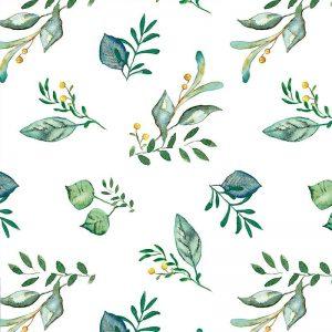 Zelené listy na bielom